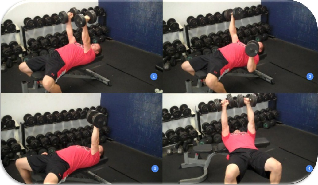 Dumbbell Bench Press Options